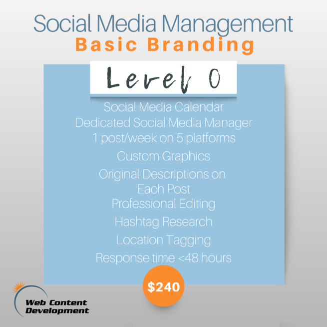 A graphic showing what you get with Level 0, Basic Branding social media management with Web Content Development.