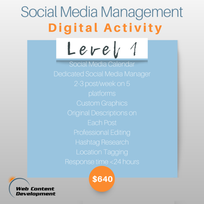 A graphic with the Level 1 Social Media Package with Web Content Development which is Digital Activity.